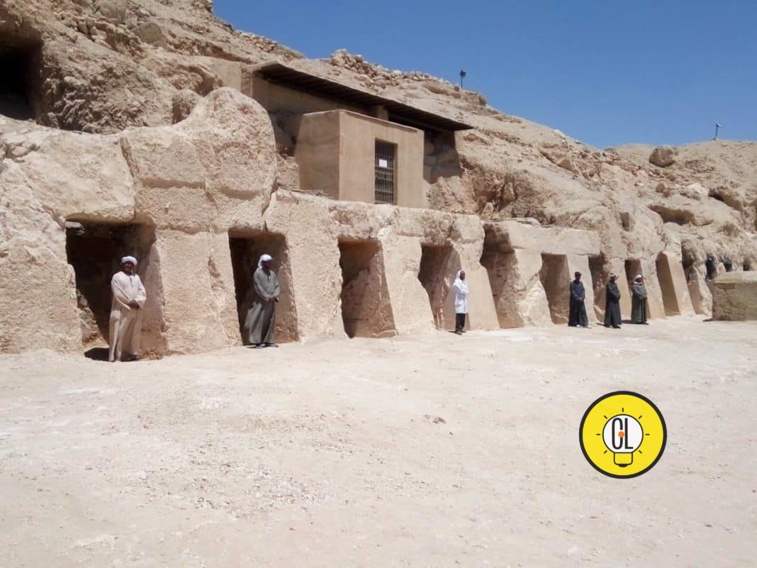Shed Sou Djehuty tomb discovered