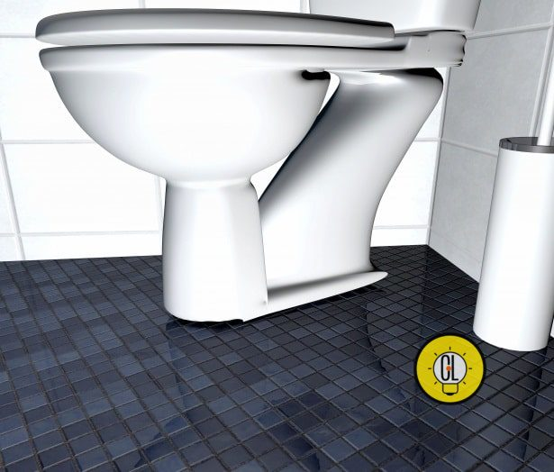 clean and disinfect your toilet