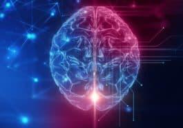 brain data storage capacity