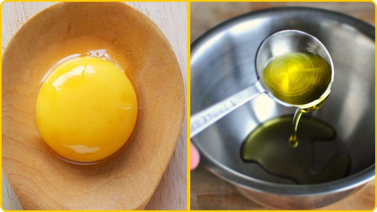 egg yolk olive oil hair growth recipe
