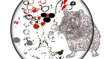 what is the huntavirus new virus