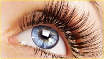 how to get longer thicker eyelashes naturally
