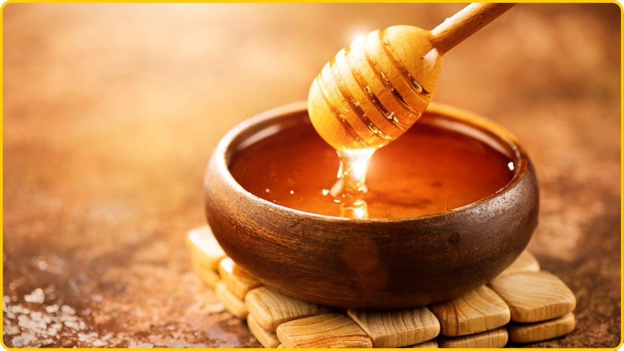 coconut sugar alternative (2)