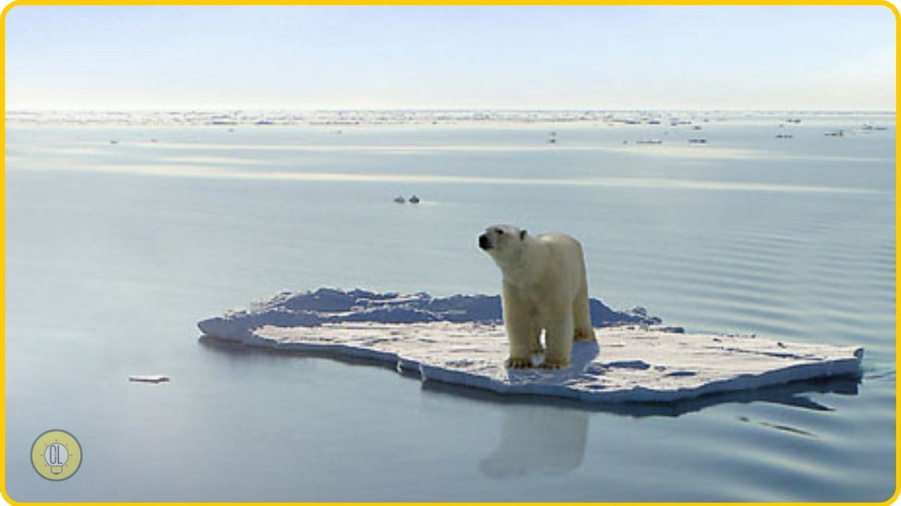 arctic pollution at highest