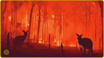 disasters in 2020 australia wildfires