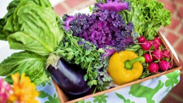 weight loss vegetables 10 greens rich in nutrients
