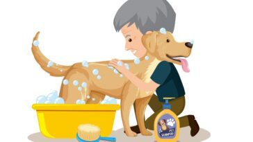 Homemade Dog Shampoo A Great Cosmetic For Your Pooch