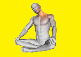 12 Great Neck Exercises Strengthen Neck and Nape Muscles