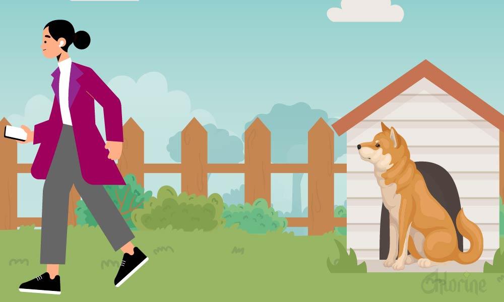 dog behavior human habits dogs don't understand-01-01