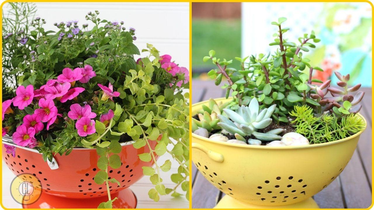 Discarded Kitchen Sieves diy flower pot